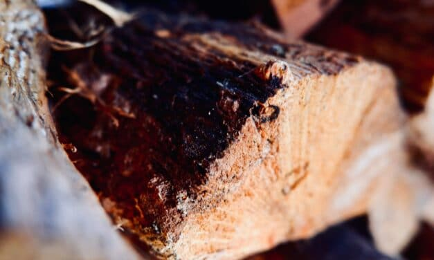 How to Season Wood for Smoking