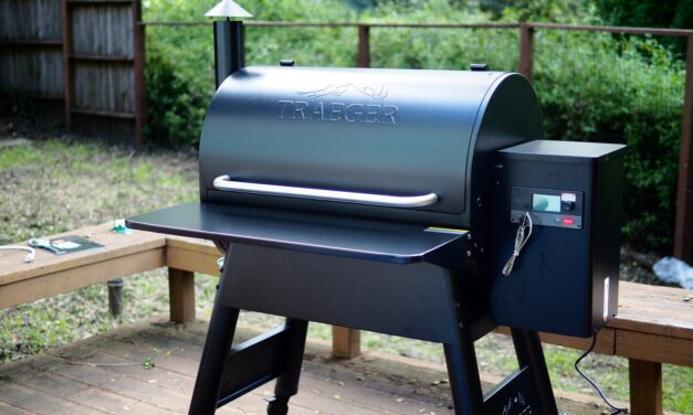 Traeger Pro 780 Review